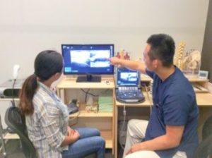 超音波エコーによるリアルタイム診断